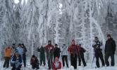 Skilager_2010_01.jpg
